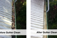professional-gutter-cleaning-services