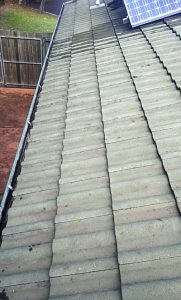 tiled roof - After gutter cleaning
