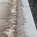 Gutter Guard Buderim After Cleaning