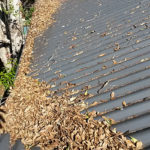 corrugated iron - Before gutter cleaning