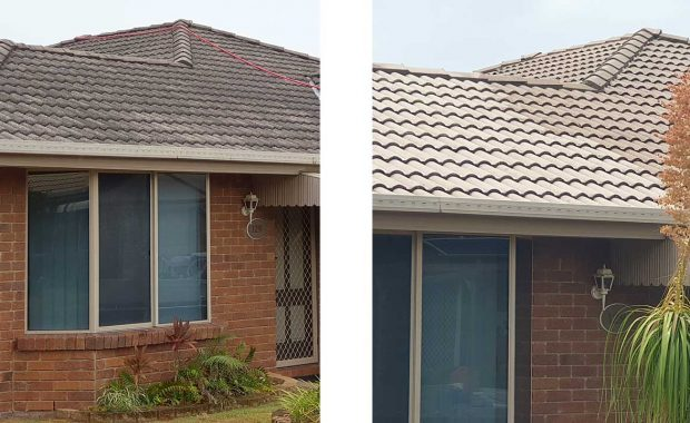 house roof softwashing