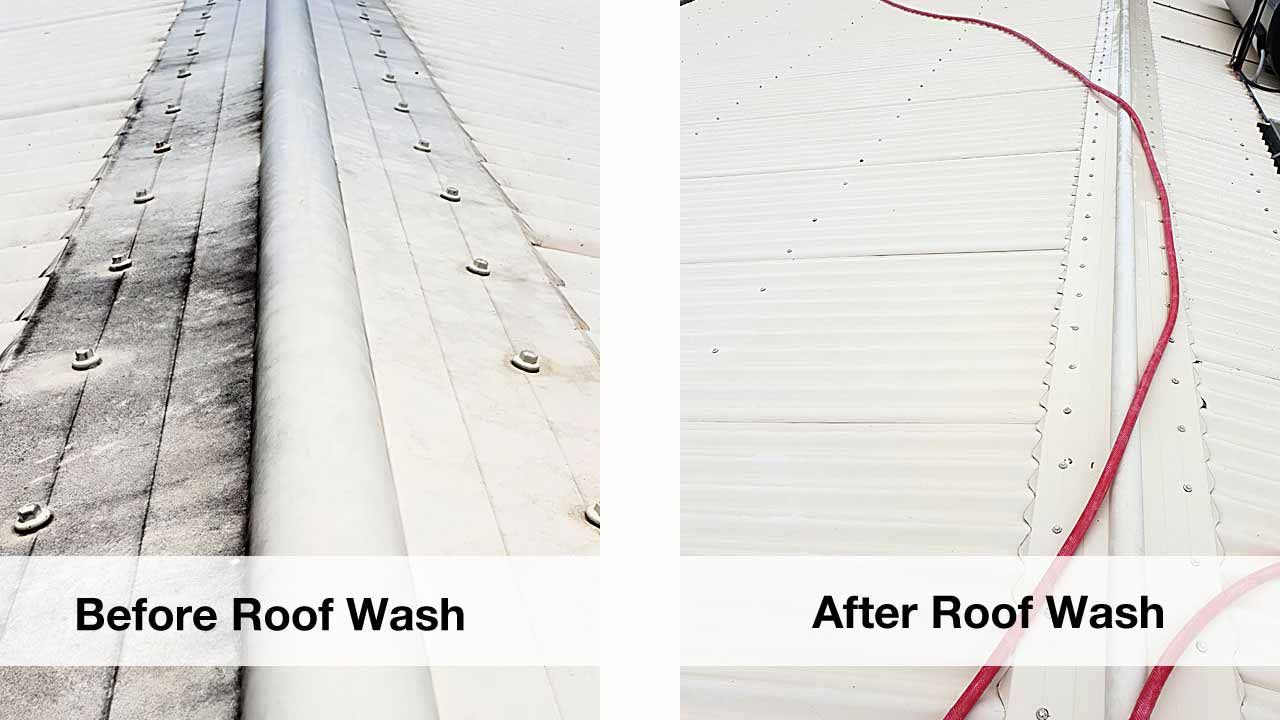 roof surface cleaning