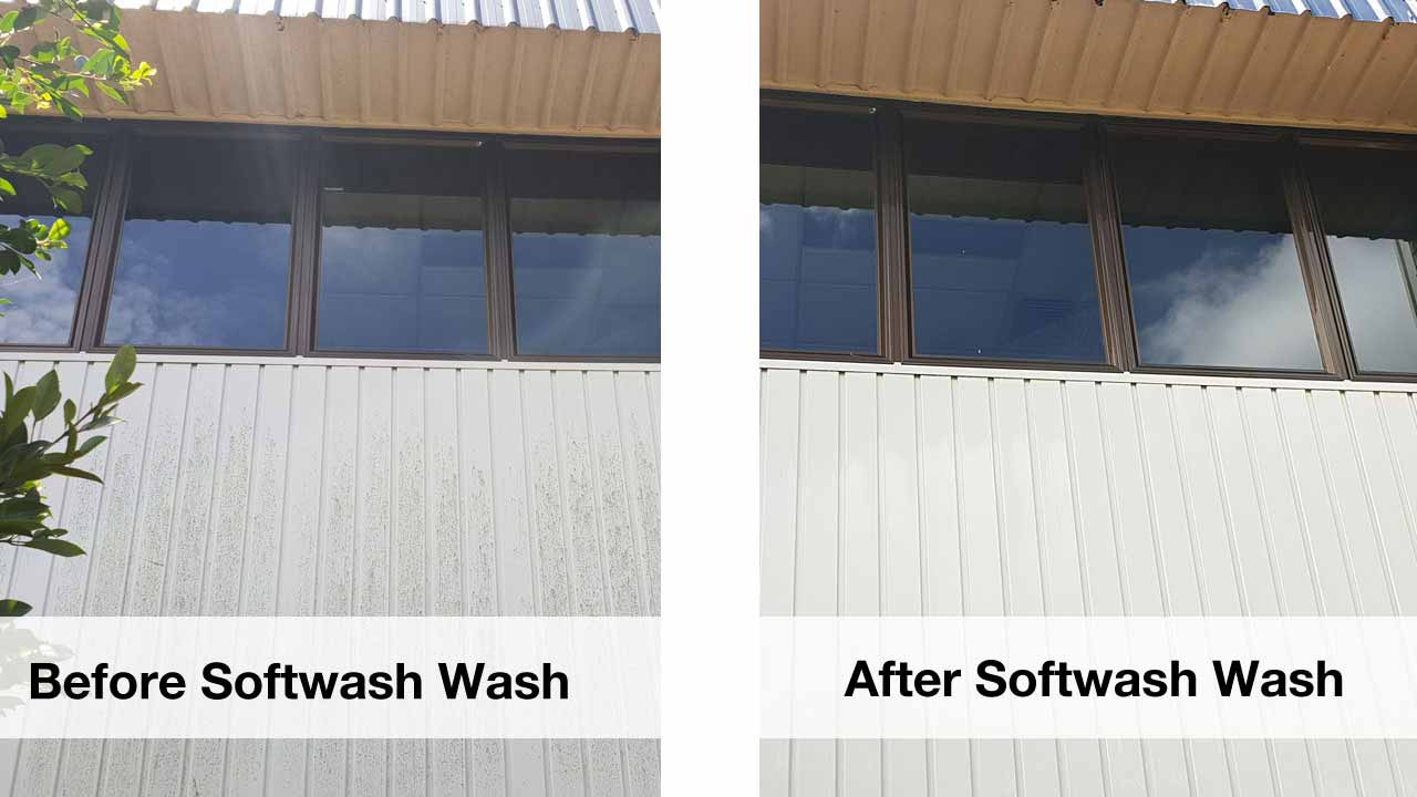 softwashing services
